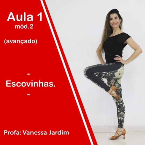 Ladies Style - Gafieira - AVANÇADO - Pacote 2 / Aula 1
